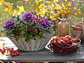 White basket bowl with Brassica, Gaultheria