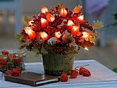 Autumn bouquet with fairy lights