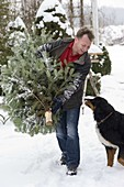 Man brings fir tree