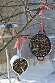 Winter food for birds in enamelled pots