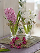 Hyacinthus (hyacinth) in small glasses, wreaths of straw