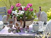 Tulipa 'Globe', Viola cornuta in a round chip basket