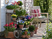 Plant stairs with spring bloomers