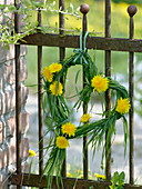 Small heart of grass with dandelion flowers hanged on rusty fence