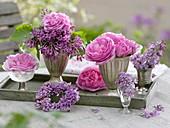 Aroma arrangement of Rosa 'Louise Odier' and Syringa