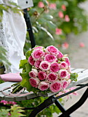 Biedermeier bouquet of pink 'Mini-Eden' (Edelrose)