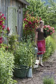 Young woman with dahlia (dahlia) and watering can in front of garden house
