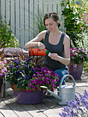 Woman fertilizing tub with balcony flowers