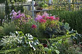 Cottage garden with perennials, vegetables and box hedge