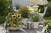 Gelb-weiße Terrasse