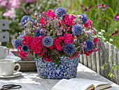 Blue-pink bouquet of perennials and herbs