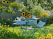 Table decoration with sunflowers under apple tree