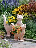 Terracotta Cats planted with Gazania and Calibrachoa