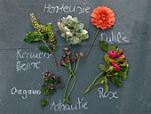 Ingredient board for rural bouquet