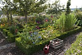 Cottage garden with fruit trees, vegetables, herbs and summer flowers