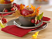 Table decoration with apple and ornamental apples, Acer leaves