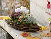 Basket in boat form planted with Cyclamen, Calluna