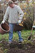 Man plants witch hazel