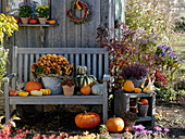 Autumn design at the garden house