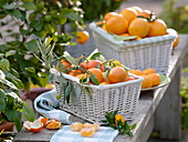 Oranges and tangerines in white baskets decorated with olive branch
