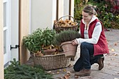Woman placing herbs in basket for hibernation with autumn leaves