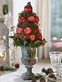 Apple cone on gray spindle vase