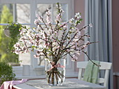 Prunus dulcis (almond) and Prunus (ornamental cherry) in glass vase