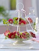 Glass storage with gerbera flowers