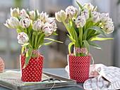 Stehsträuße aus Tulipa 'Carneval de Nice' (Tulpen)