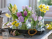 Hyacinthus, Tulipa, Narcissus 'Tete a Tete'