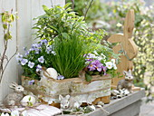 Herbs and edible flowers in the basket