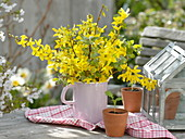 Branches of forsythia and malus in enamel jug