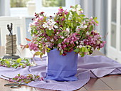 Malus branches with glass put in purple paper bag