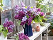 Syringa (lilac) in blue enamel jug