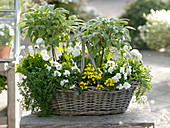 Basket of herbs and edible flowers