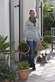 Woman brings Agapanthus to the terrace
