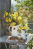 Sträuße aus Narcissus (Narzissen), Forsythia (Goldglöckchen)