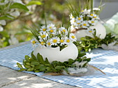 Ostrich egg as a vase in a Buxus (Box) wreath with feathers