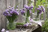 Stehsträuße aus Schnittlauch (Allium schoenoprasum) in Einmachgläsern