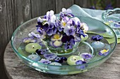 Viola cornuta (horn violet) with floating candles in glass bowl