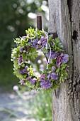 Kleiner Kräuterkranz aus Schnittlauch (Allium schoenoprasum), Petersilie