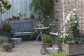 Romantic terrace with Rose, rosemary, lavender