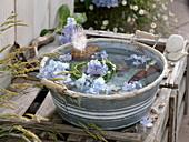 Maritime decoration in zinc bowl