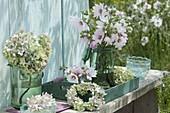 Hydrangea (Hortensien) Blüten und Kranz, Lavatera (Strauch - Malve)
