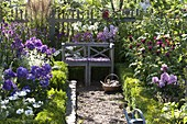 Farm garden with flowering perennials and summer flowers