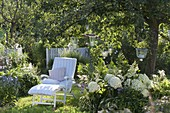 White lounger under the apple tree, bed with hydrangea