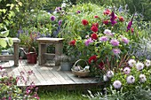 Summer bed with Dahlia, Gladiolus, Spartina