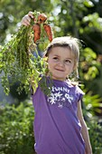 Girl with freshly picked carrots, carrots (Daucus carota)