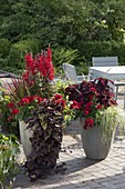 Tall gray tubs with red plants