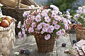 Bouquet of aster and Rose in basket vase